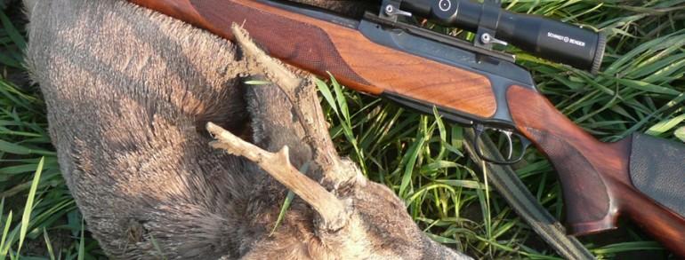 Policajac ubio srndaća, pa uhapšen zbog krivolova